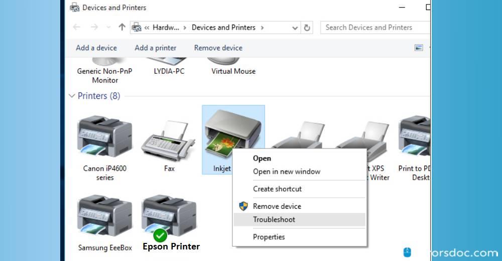 troubleshot - epson printer in error state